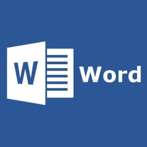 Microsoft Word Vulnerability